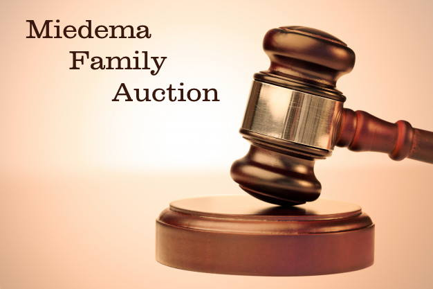 Miedema Family Auction